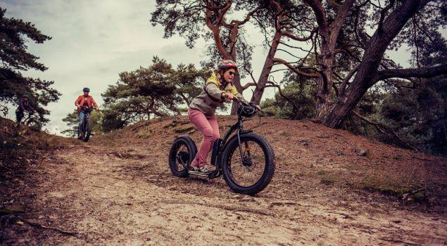 Kickbike Fat Max E-step op 1,5 meter (in Randstad)