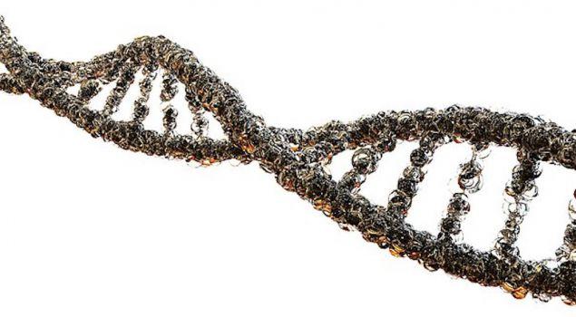 The DNA Challenge